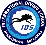International Diving School